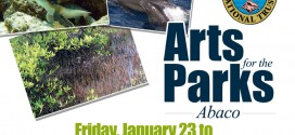 Arts for the Parks, Abaco