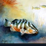 www.islandwatercolors.com